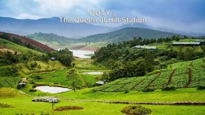 Queen of Hill Station